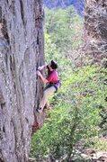 Rock Climbing Photo: crack!