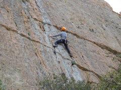 Rock Climbing Photo: Not Lichen This.