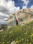 Rock Climbing Photo: Thundercat! boulder