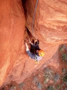 Rock Climbing Photo: Bean gripping the natural honeycomb on P2.