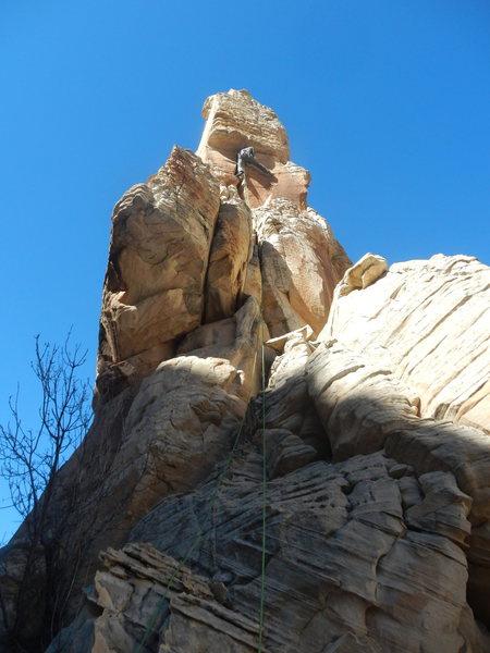 Rock Climbing Photo: Trevor on FA