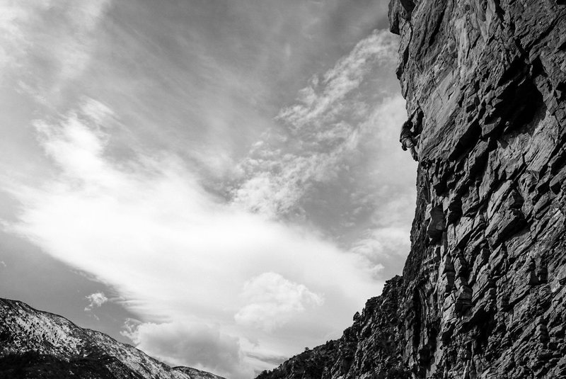 Rock Climbing Photo: Velociraptor.