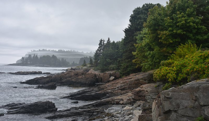 Coast near Bar Harbor