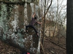 Rock Climbing Photo: Local on Have It.