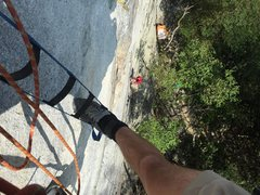 Rock Climbing Photo: Zombie Zoo Pitch 1