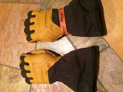 BD Guide Glove