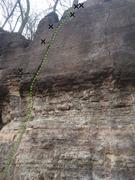 Rock Climbing Photo: Planned Parenthood