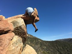 Rock Climbing Photo: The Turtle
