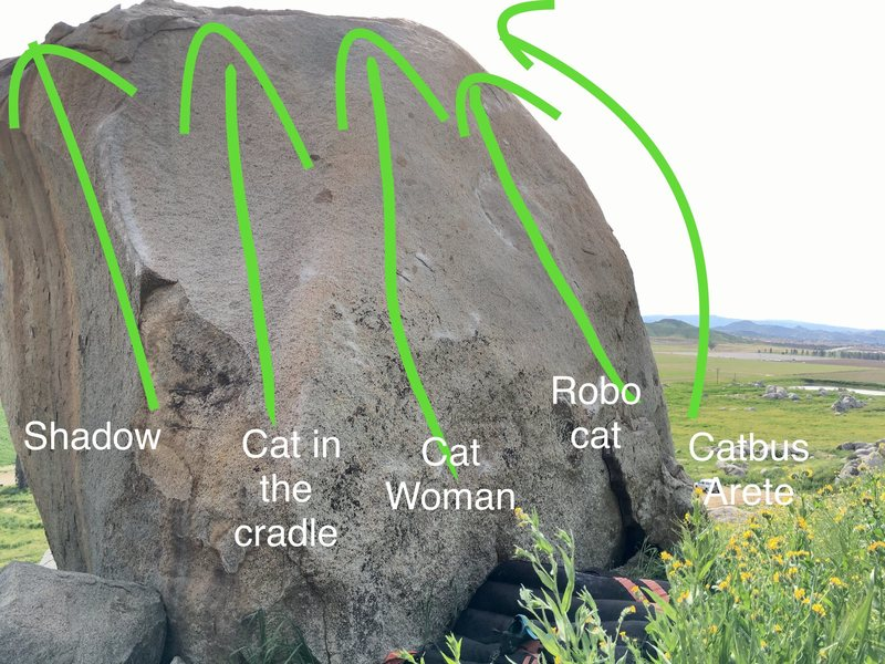 All the slab routes on the northface of Electric Bobcat