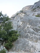 Rock Climbing Photo: Looking up on p1. We were able to scramble higher ...