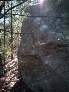 Rock Climbing Photo: Venom Boulder.
