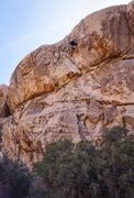Rock Climbing Photo: The route set for top rope offers a little more co...