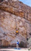 Rock Climbing Photo: Super fun TR in J Tree!