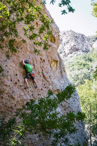 Rock Climbing Photo: Drillin on the Gorilla Drilla