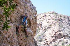 Rock Climbing Photo: Rifling through the rack for the next piece