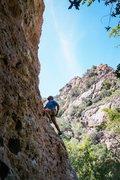 Rock Climbing Photo: Eyeing the next move