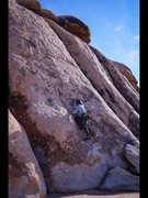 Rock Climbing Photo: Please help me, I seem to have misplaced all the h...