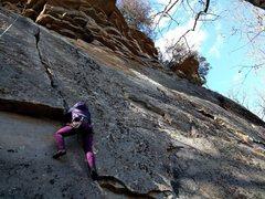 Rock Climbing Photo: Amanda Nedved toproping Hidden Precious