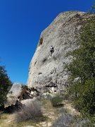 Rock Climbing Photo: Tom on Newt-ist Colony. This wall gets hot even wh...