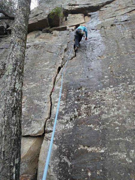Rock Climbing Photo: Great Jams.