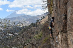 Rock Climbing Photo: Entropia