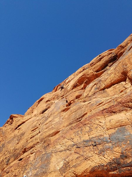 "Rock Climbing Photo: Amy Colburn high up on ""Going to California&q..."