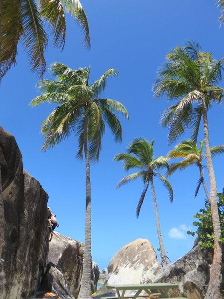 Rock Climbing Photo: BVI3