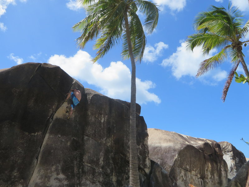 Rock Climbing Photo: BVI10