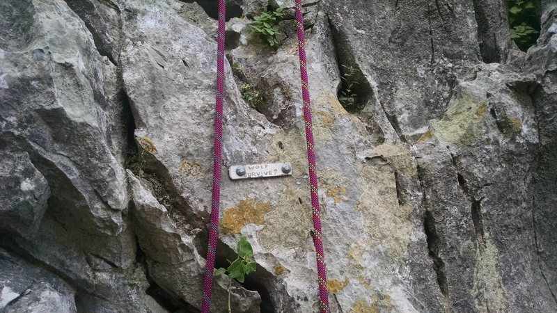 "Rock Climbing Photo: Placard at the base of ""Will the Wolf Survive..."