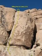 Rock Climbing Photo: Sitting Here in Limbo (5.9), Joshua Tree NP
