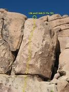 Rock Climbing Photo: Life and Limb (5.11a TR), Joshua Tree NP