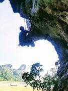 Rock Climbing Photo: The start of Muay Thai just after first bolt.