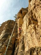 Rock Climbing Photo: Reggie cleaning the route and marking the bolt pla...