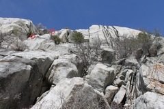 Rock Climbing Photo: We rappelled off Bushwhack's 2nd pitch anchors...