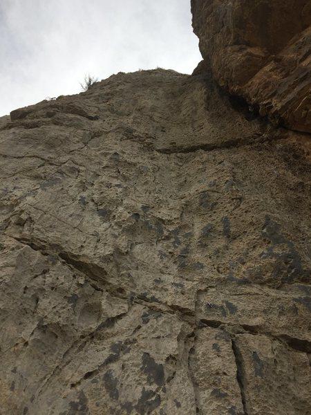 80 Feet
