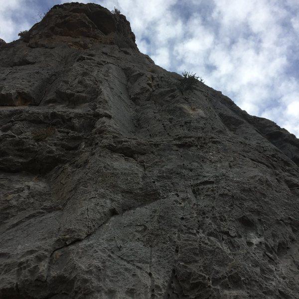 Rock Climbing Photo: LIDS