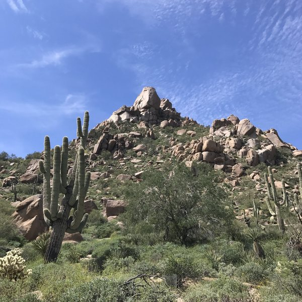 Rock Climbing Photo: Looking up at Pinnacle Peak from the bottom of the...