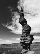 Rock Climbing Photo: Tree pose!