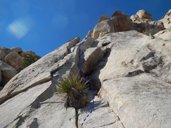Rock Climbing Photo: Looking up at Faith Healer from the base.