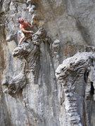 Rock Climbing Photo: Sacrifice