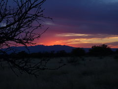 Rock Climbing Photo: Sunset from the Sheepshead camp area