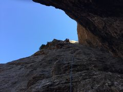 Rock Climbing Photo: Perfect last day of Winter on the crack.