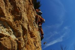 Rock Climbing Photo: Be cautious on patent pending! A large owl has mad...
