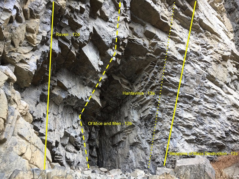The Hantavirus Cave