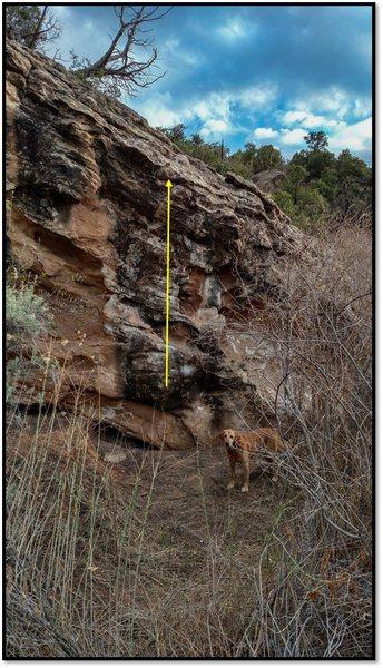 Rock Climbing Photo: ASS.