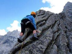 Rock Climbing Photo: Carol Petrelli bringin' us home to the summit ...