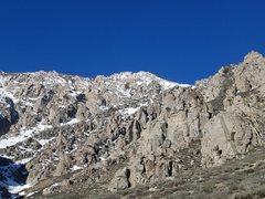 Rock Climbing Photo: Elderberry