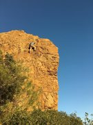 """Rock Climbing Photo: Jerry revisits """"Little Jerry"""" 5.11b afte..."""
