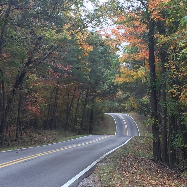 Canyon Rim Road in the fall.
