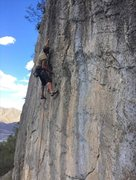 Rock Climbing Photo: Wade crankin on Last Battle. Photo by John Cunning...